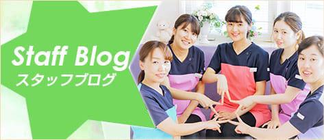 鈴木歯科クリニックスタッフブログ